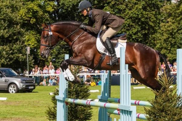Horse Scout Profile Britannia's Mail