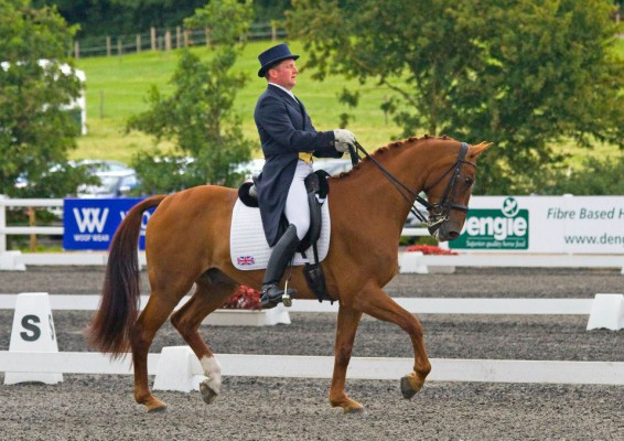 Matt Hicks - Dressage and Eventing trainer
