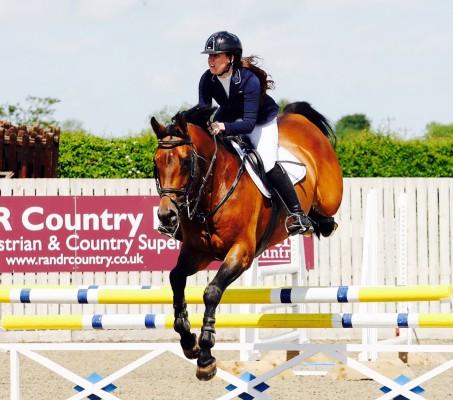 Show Jumping Stallion Babeleh