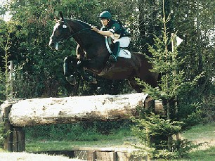 Catherston Liberator Thoroughbred Event Stallion