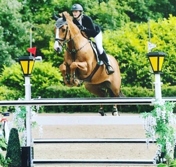 Horse Scout invests in star show jumpers