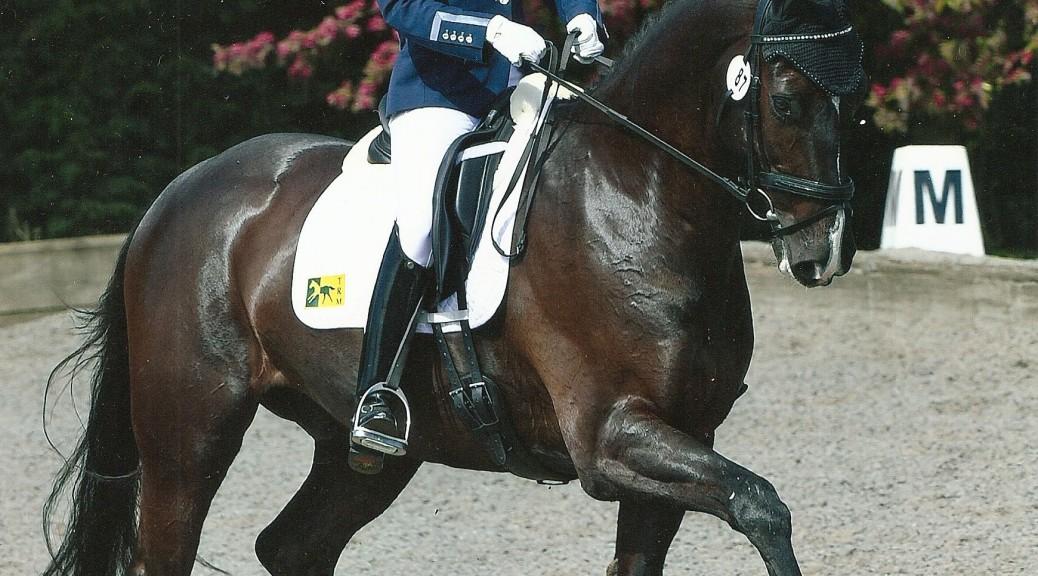 Horse Scout Ambassador Nicola Buchanan