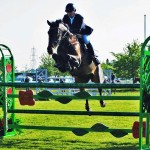 eoin gallagher irish show jumper professional trainer on horse scout