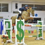 eoin gallagher talks to horsescout about producing young showjumpers