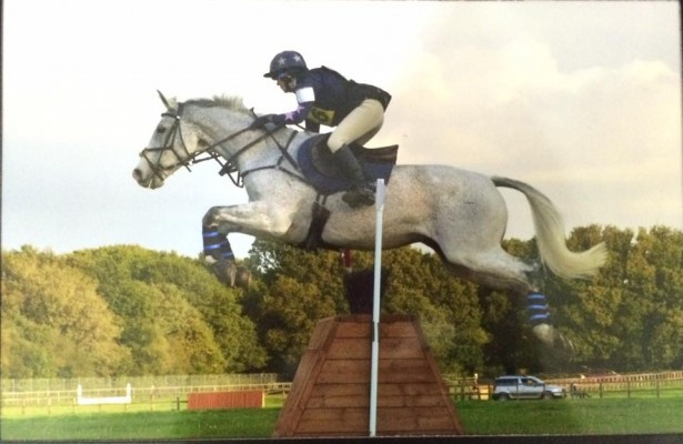 zazou-Snow-with-Aaron-Millar-listed-on-horses-for-sale-on-horse-scout