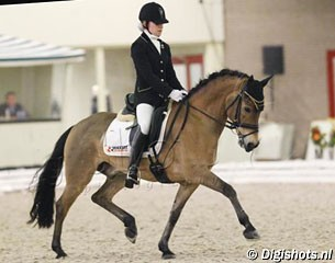 fei-dressage-pony-for-sale-on-horse-scout-remco
