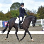 Wish Upon A Star 8 year Old dressage mare for sale on Horse Socut