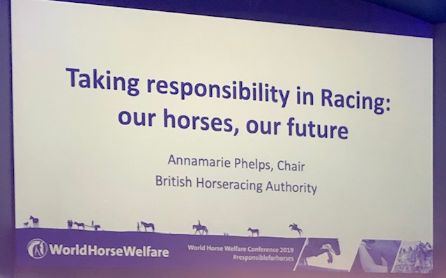 Wold Horse Welfare Conference
