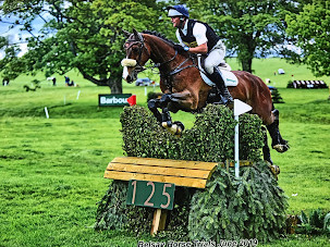 Top event horse for sale