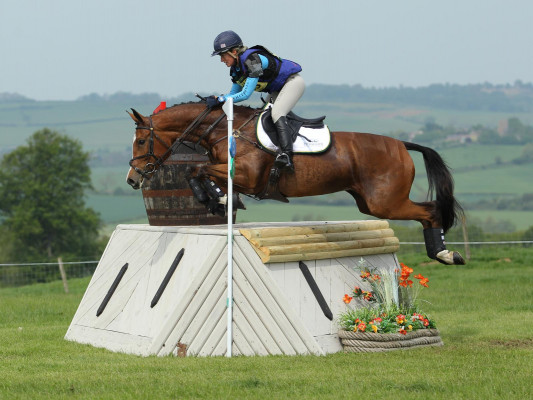 Exceptional 3* event horse for sale